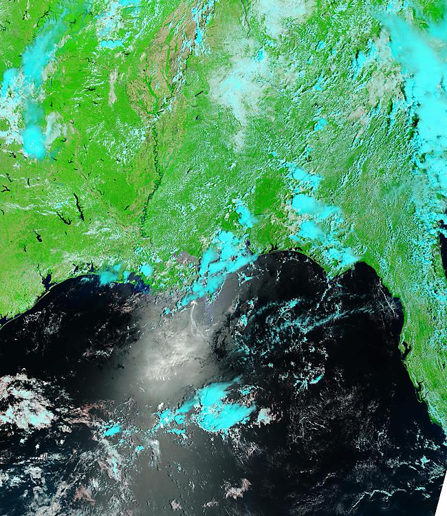 MODIS / NOAA / NASA satellite photo in false color of the oil spill in the Gulf of Mexico - May 31, 2010 (today)